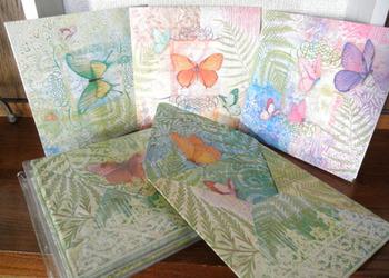 蝶のカードセット.jpg